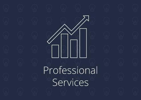 Professional Services R&D Claim